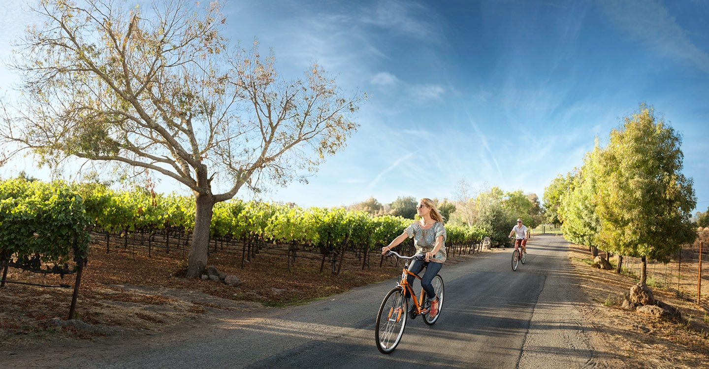 Couple_Riding_Bikes_winery_Rod_McLean_g