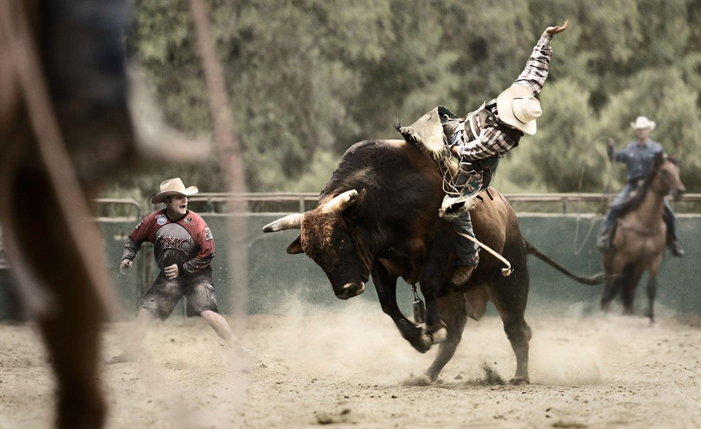 Rod Mclean - bull rider