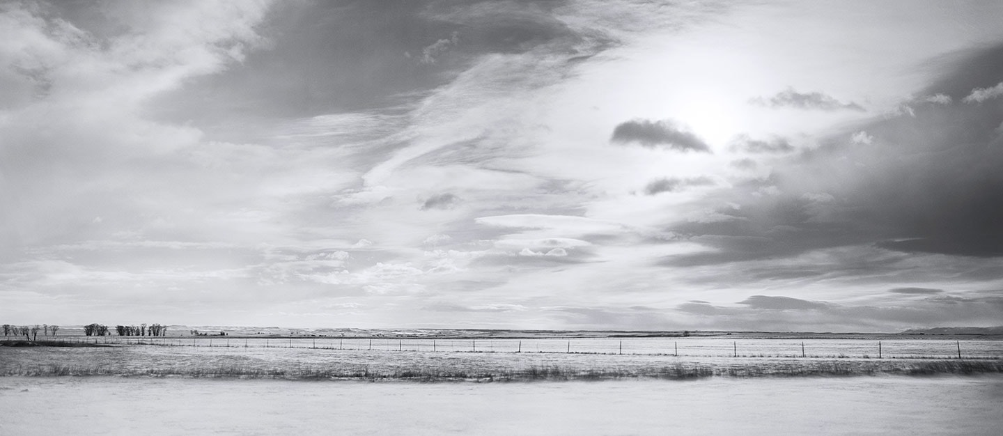 Rod Mclean - black and white field