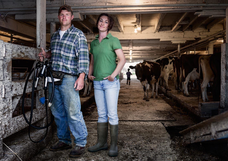 Rod Mclean - dairy farmers