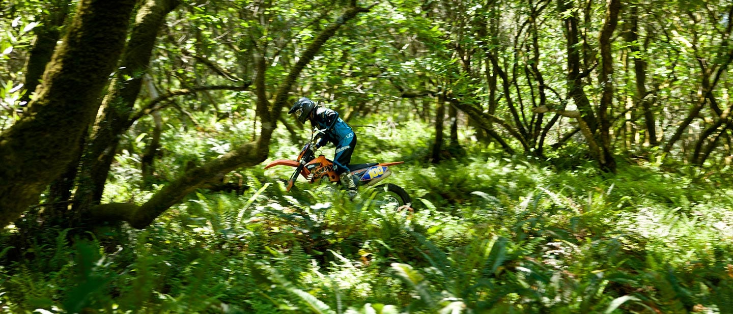 motor cross biker in the woods