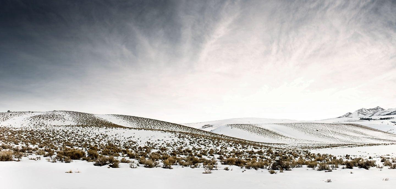 Rod Mclean - snowy field