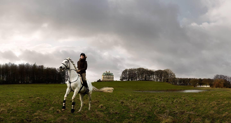 Rod Mclean - woman on a horse in a field