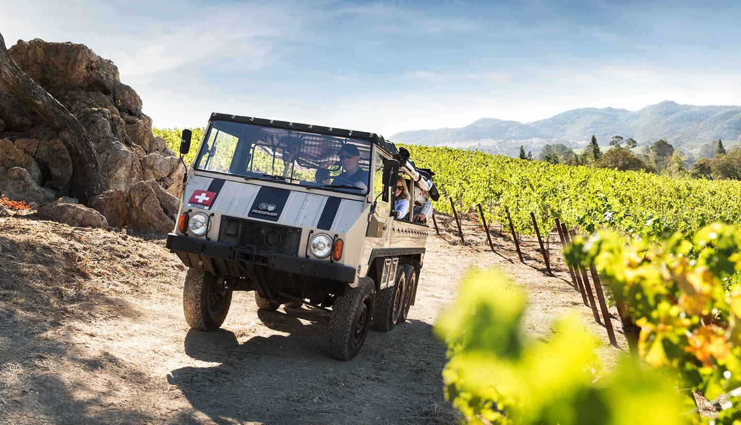 Image of Truck Driving Along Lush Green Vineyard Bright Sunny Day