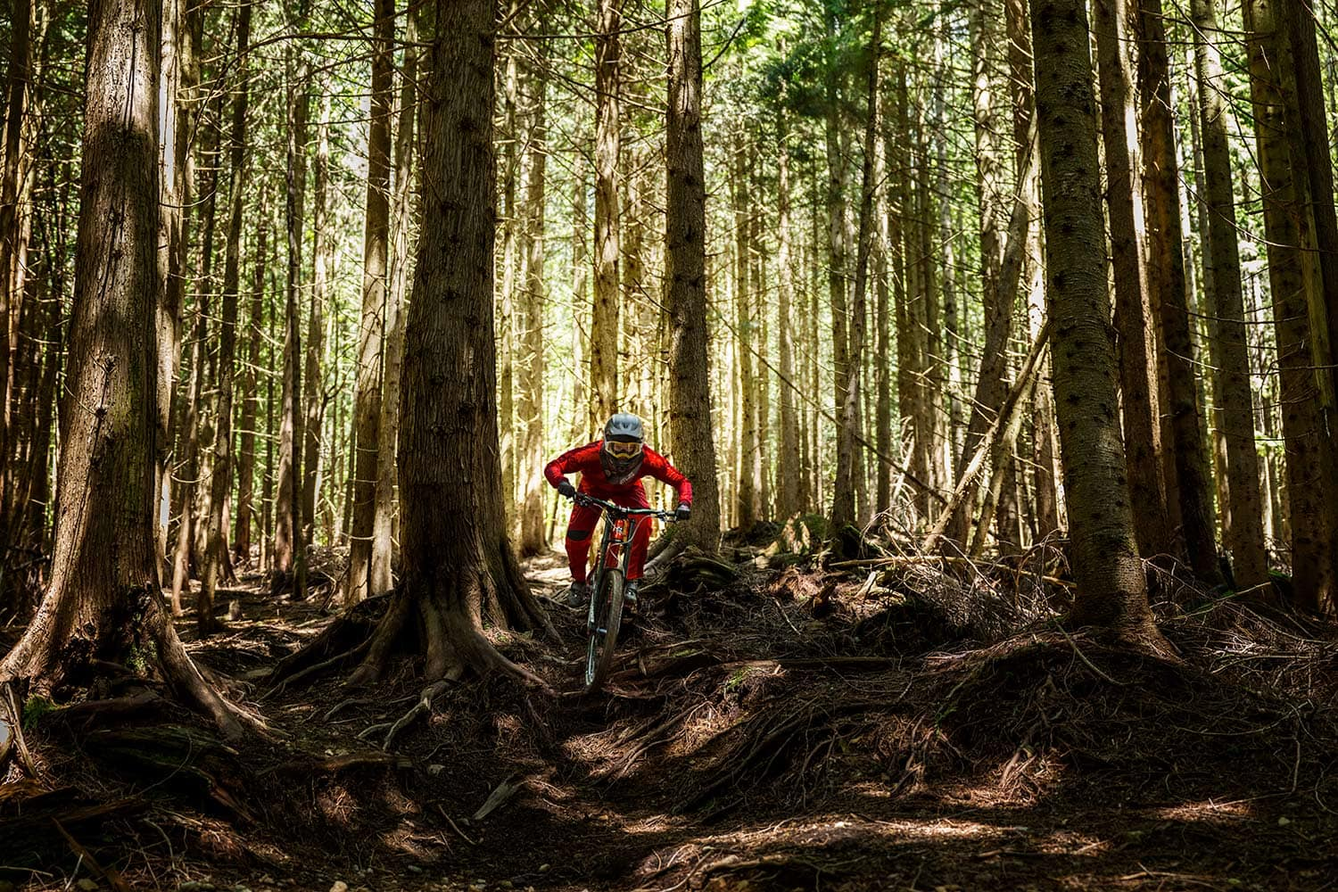 Athlete-Downhill-female-Mountain-Biker-Vaea-in-the-woods-Rod-McLean